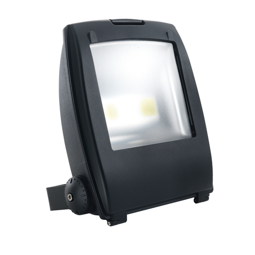 FLEX100C - 100W IP65 Rated High Power Energy Saving Cool White LED Floodlight