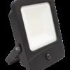 20W Remote Control Floodlight